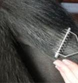 Smart grooming Uitdun kam mane & staart