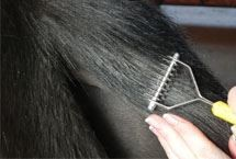 Smart grooming Thinning comb mane & tail