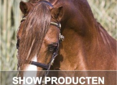 SHOW GROOMING
