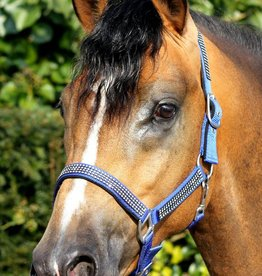 HB Headcollar Diamond