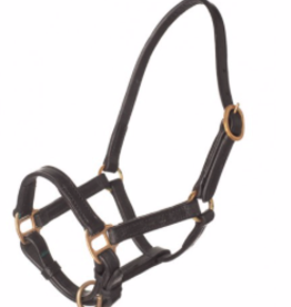 HB Leather headcollar foal
