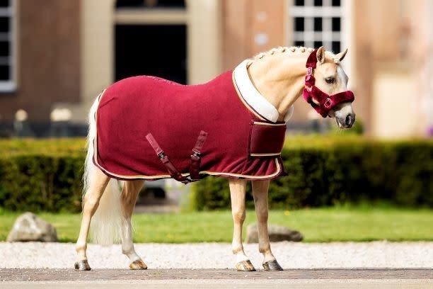 "HB Fleece show rug ""Dutch Crown"""