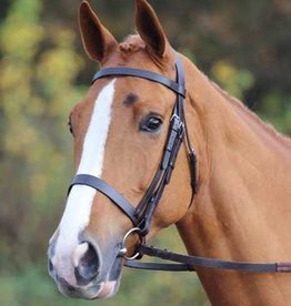 JHL Bridle with plain cavesson