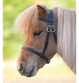 show bridle mare