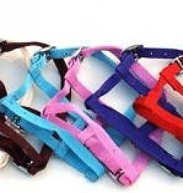 HB foal headcollar nylon mini