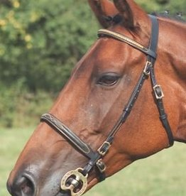 Leather show bridle partbred/cob