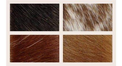 fur-hairy