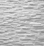 Rebel of Styles UltraLight Tasso blanc