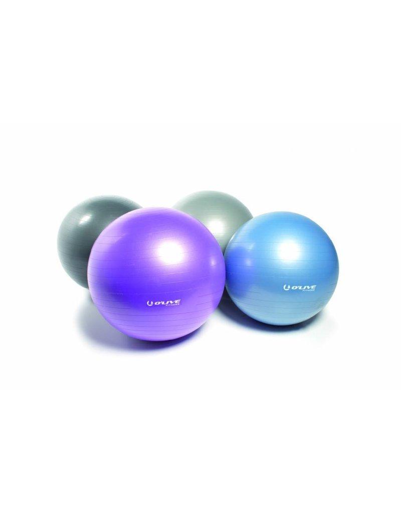 O'LIVE FITNESS O'LIVE EXCERCISE BALL 55cm Purple