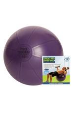 FITNESS MAD Swiss Ball avec pompe 500kg 55 cm (1,3 kg) violet