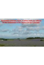 FITNESS MAD Cotswold lavender Eye Pillow 100% katoen Lijnzaad en Lavender vulling 23x11 cm Blauw