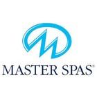 Master Spa Filtres