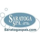 Saratoga Spa Filters