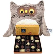 Plush Owl (XL) + Autumn Gift Box