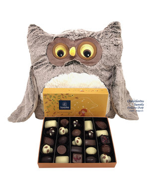 Plush Owl (XL) + Autumn Gift Box