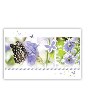 lila Schmetterlinge (11,5x18cm)