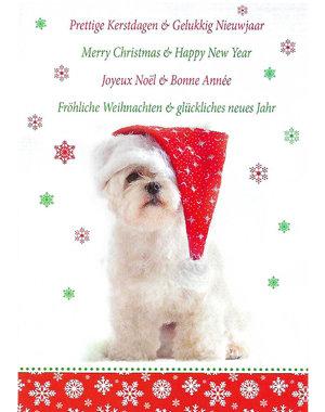 Frohe Weihnachten - Gutes neues Jahr (10x15cm)