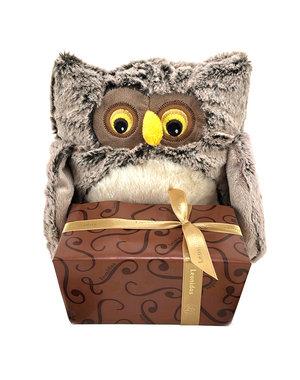 Plush Owl (M) + Autumn Chocolates 500g