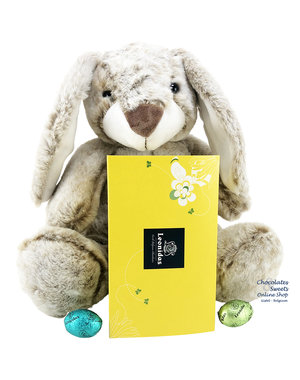 Easter Rabbit (25 cm) and 500g Easter Eggs