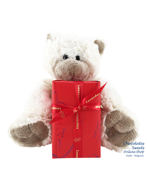 Leonidas 300g chocolates and Teddy bear Snoozy (20cm)