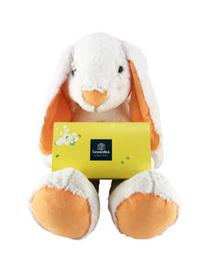 Easter Rabbit (40 cm) and 1kg Easter Eggs