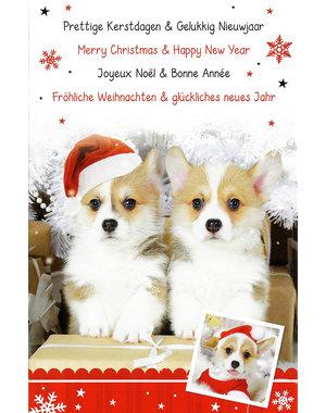 Frohe Weihnachten - Gutes neues Jahr (11x17cm)