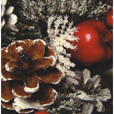 Fijne Kerst (7x7cm)