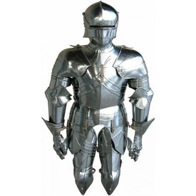 Luxurious gothic half armour