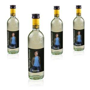 Flesjes Witte Wijn Grand Sud 25 cl met foto etiket