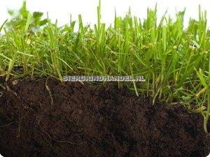Compostgrond