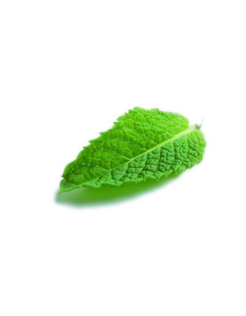 Fruit Emotions, voet scrub, mint-lavendel, 75 ml