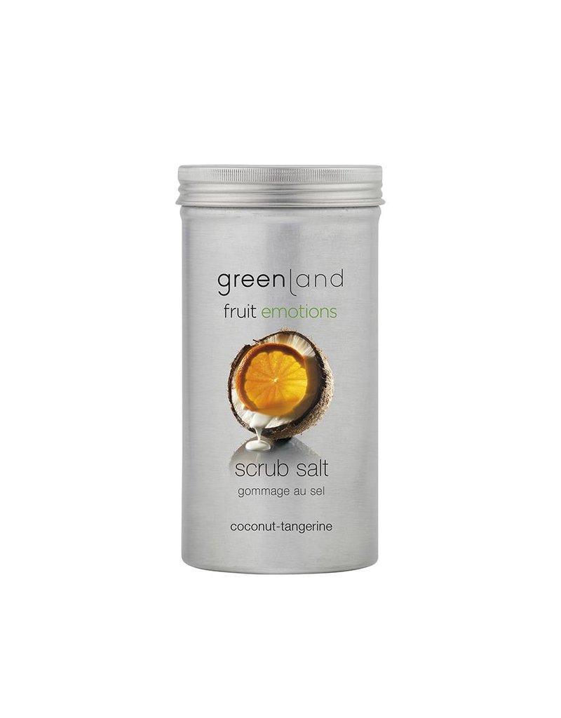 Fruit Emotions scrub salt coconut-tangerine, 400 g