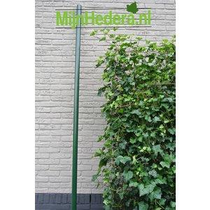 Kant en Klaar Haag paal groen