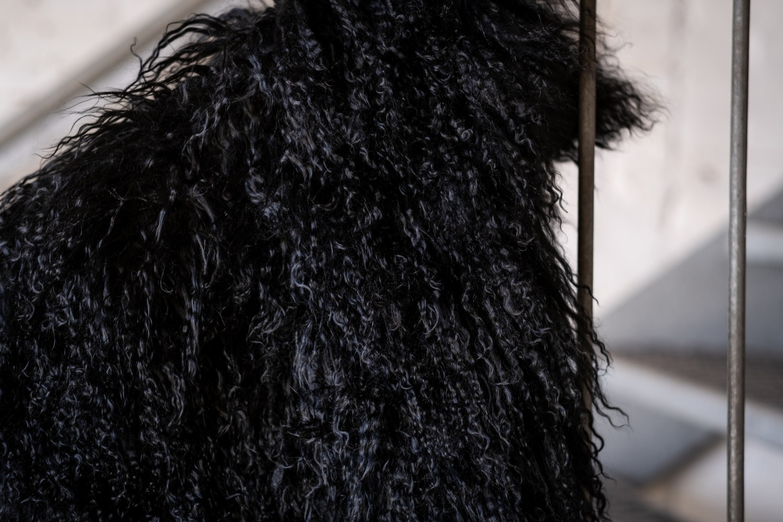 testVan Buren Zacht zwart kussen van Tibet lamsvacht