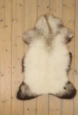 Van Buren Blauwe Texelaar Schapenvacht - Grijs - Uniek Gefotografeerd - ca. 105x60cm - US062
