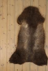 Van Buren Blauwe Texelaar Schapenvacht - Bruin - Uniek Gefotografeerd - ca. 110x60cm - US051