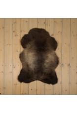 Van Buren Blauwe Texelaar Schapenvacht - Bruin - Uniek Gefotografeerd - ca. 100x75cm - US025