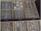 Lot of 2540 Antique Glass Watch Crystals in Cabinet (NOS)