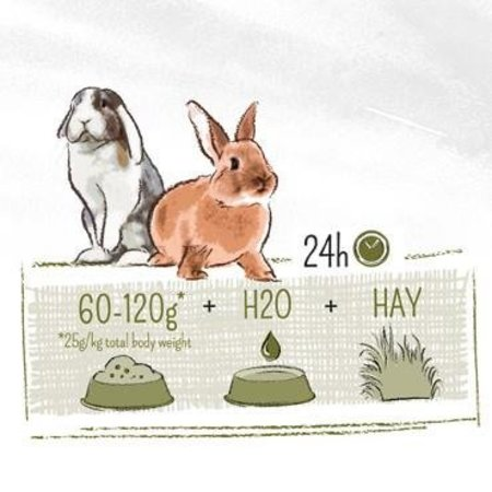 Witte Molen PUUR Kaninchen