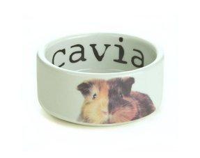 Cavia feeding bowls