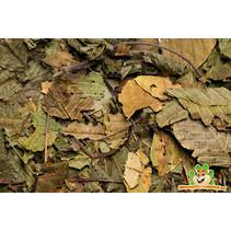 Lower tract Walnut leaf 80 gram