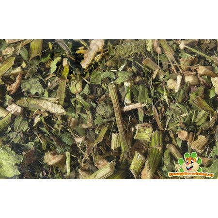 Nagertraum Echinacea 150 gram