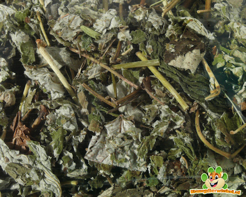 Nagertraum Frambozenbladeren 80 gram