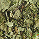Knaagdier Kruidenier Hazelnootbladeren
