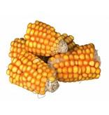 Trixie PURE NATURE Corn on the cob
