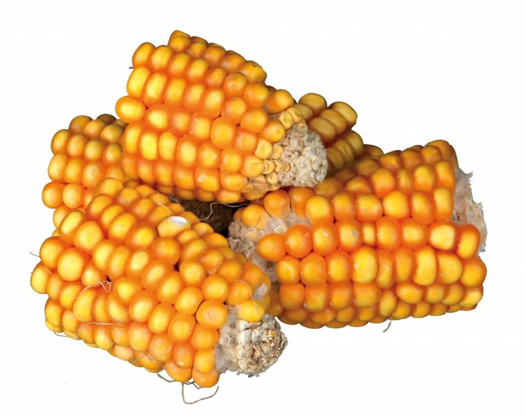 Trixie NATURAL Corn