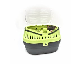 Ratten Transportbox