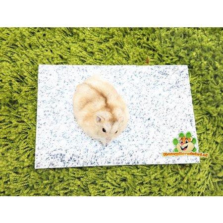 Knaagdierwinkel® Kühlstein Granit 20 cm
