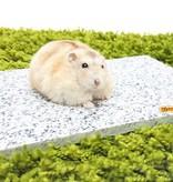 Knaagdierwinkel® Koelsteen Graniet