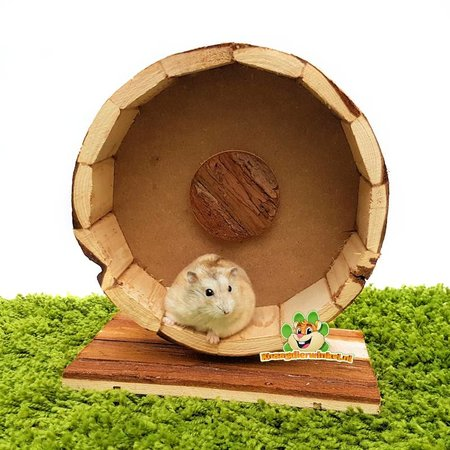 Trixie Forest Hamstermolen 20 cm
